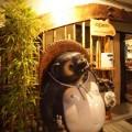 SHIGARAKI_066