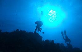 ダイビング風景
