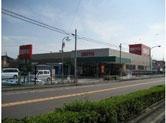 seiyu-fujishima