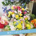 top-banner-emon-report063