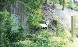 険しい山道を登っていくと、ここに到着します。 この奥に大山廃寺跡が広がっています。